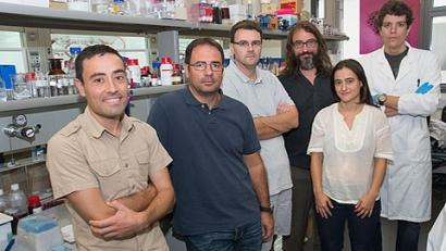 Triplican la producción de biogás con nanopartículas de óxido de hierro.