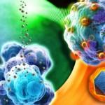 Prueban nanopartículas de óxido de hierro contra tumores en ratones